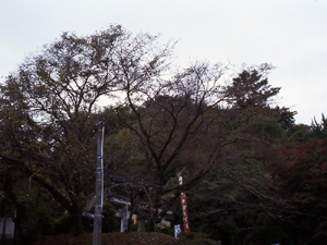 大森でぶらパチ☆132