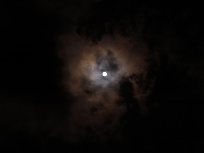 NightWalk 056