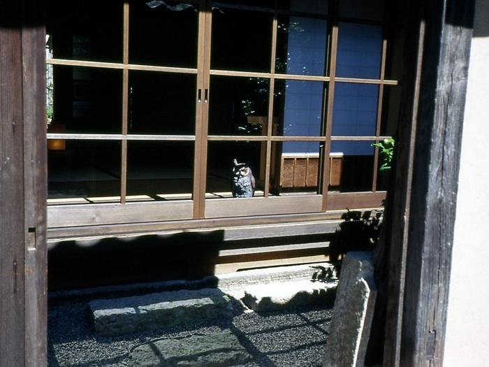 大森でぶらパチ☆164
